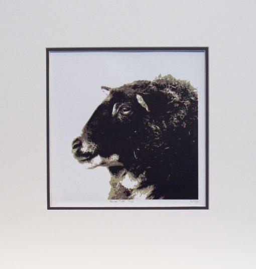 Glynis Mills, Ewe Two, Screen print