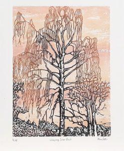 Adrian Sestini Weeping Silver Birch Woodcut