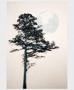 'Blue Moon' Solar plate etching by Irena Przybyl