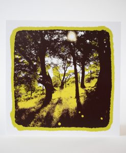 A Dayglow Summer in Owlers Wood, Screen print on card by Dan Booth