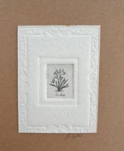Original etching snowdrops card