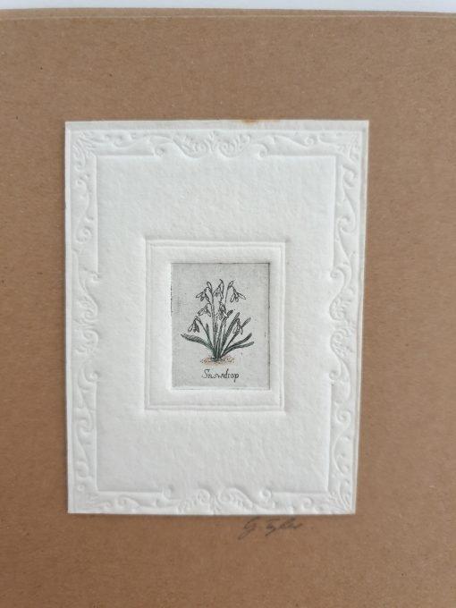 Original etching snowdrops card