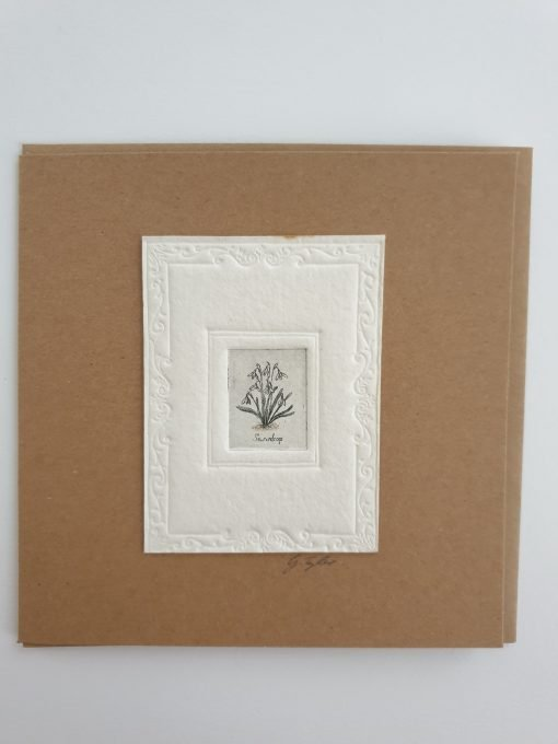 Original etching snowdrops card by Gillian Tyler