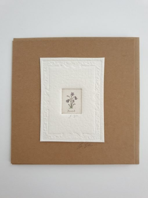 Original etching harebells card by Gillian Tyler
