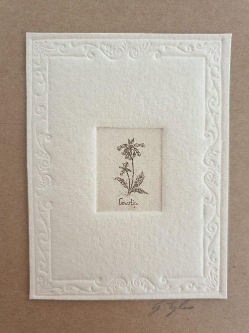 Gillian Tyler cowslip etching card