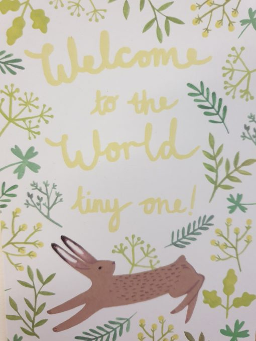 Welcome to the World by Stephanie Cole Designs